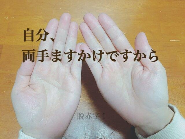 両手ますかけ